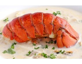 Raw Shell-on Lobster Tails