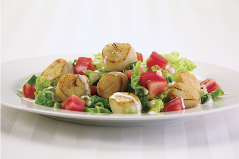 Canadian Sea Scallop Salad